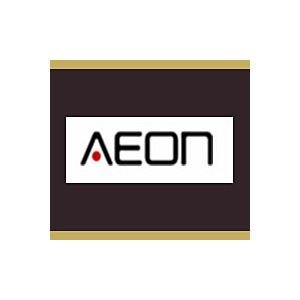 Aeon Stainless Steel Vertical Radiators