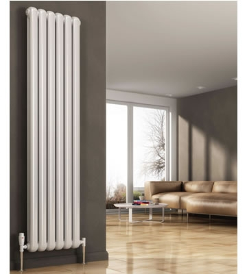 Reina Coneva Vertical Radiators in RAL Colour Finishes
